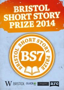 2014 BS7 flyer